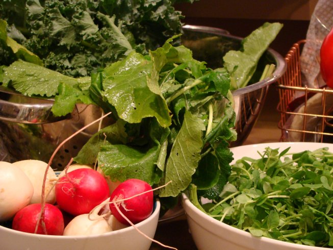 Salad Turnips, Radishes, Turnip Greens, Kale, Pea Shoots